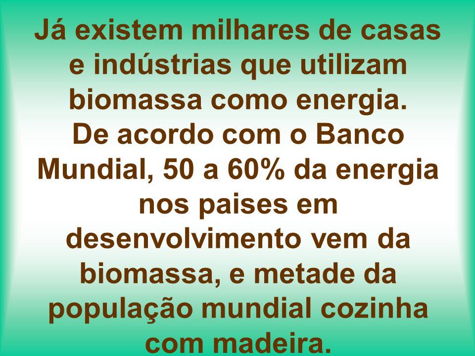 BRASIL: a fermentação e destilação da cana de açúcar está produzindo etanol para mistura com a gasolina.