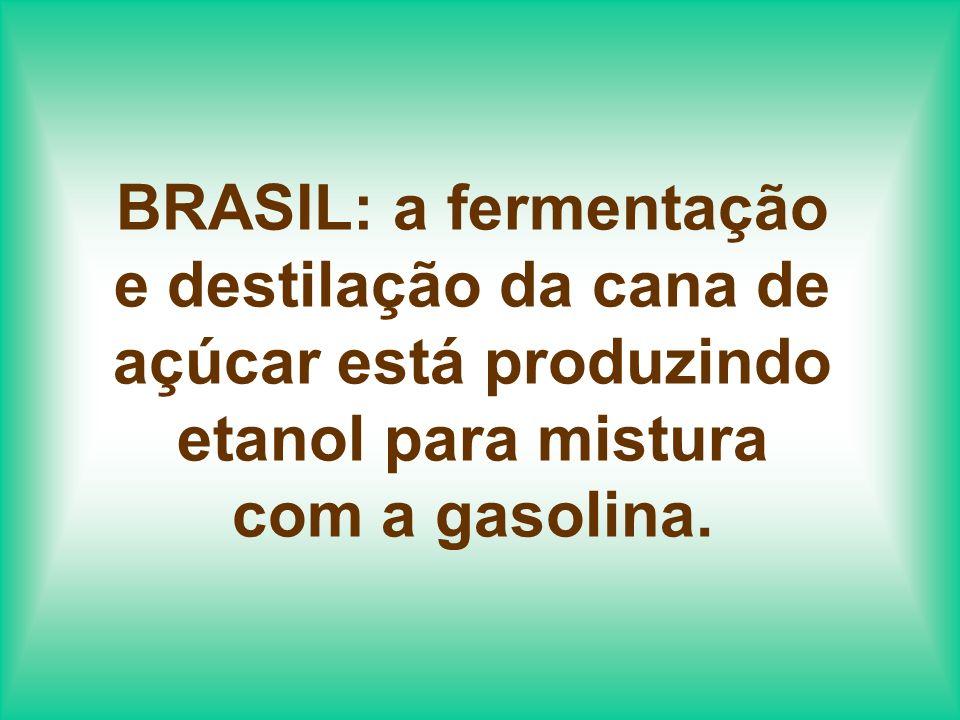 Nos EUA, a mistura etanol- gasolina corresponde a 8% do mercado de combustíveis, enquanto que, no Brasil, 43% dos automóveis são movidos a álcool.