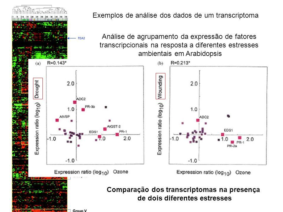 Exemplos de análise dos dados de um transcriptoma Análise de agrupamento da expressão de fatores transcripcionais na resposta a diferentes estresses a