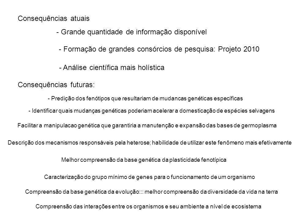 Consequências atuais - Grande quantidade de informação disponível - Formação de grandes consórcios de pesquisa: Projeto 2010 - Análise científica mais