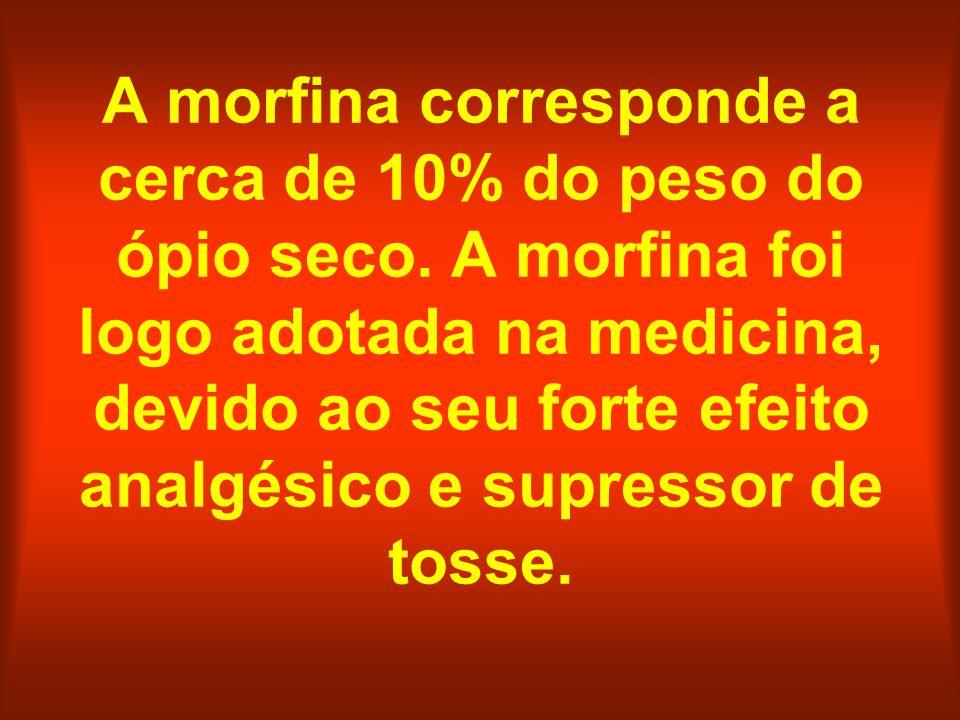 A morfina corresponde a cerca de 10% do peso do ópio seco. A morfina foi logo adotada na medicina, devido ao seu forte efeito analgésico e supressor d