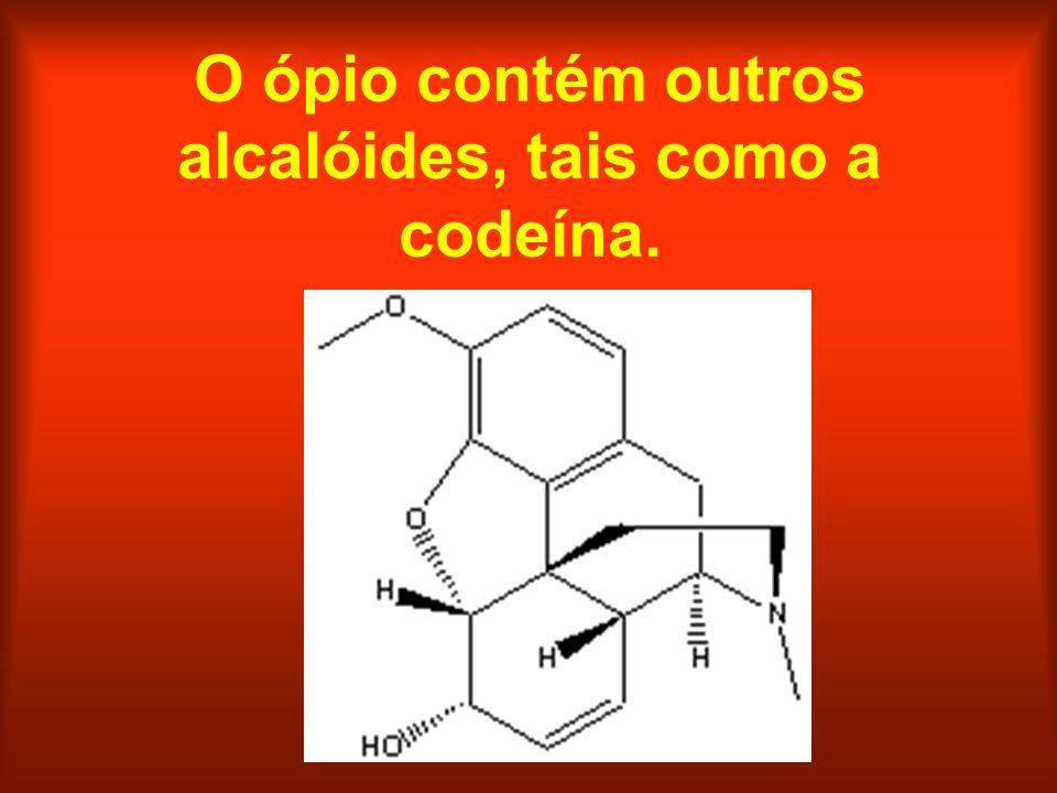 O ópio contém outros alcalóides, tais como a codeína.