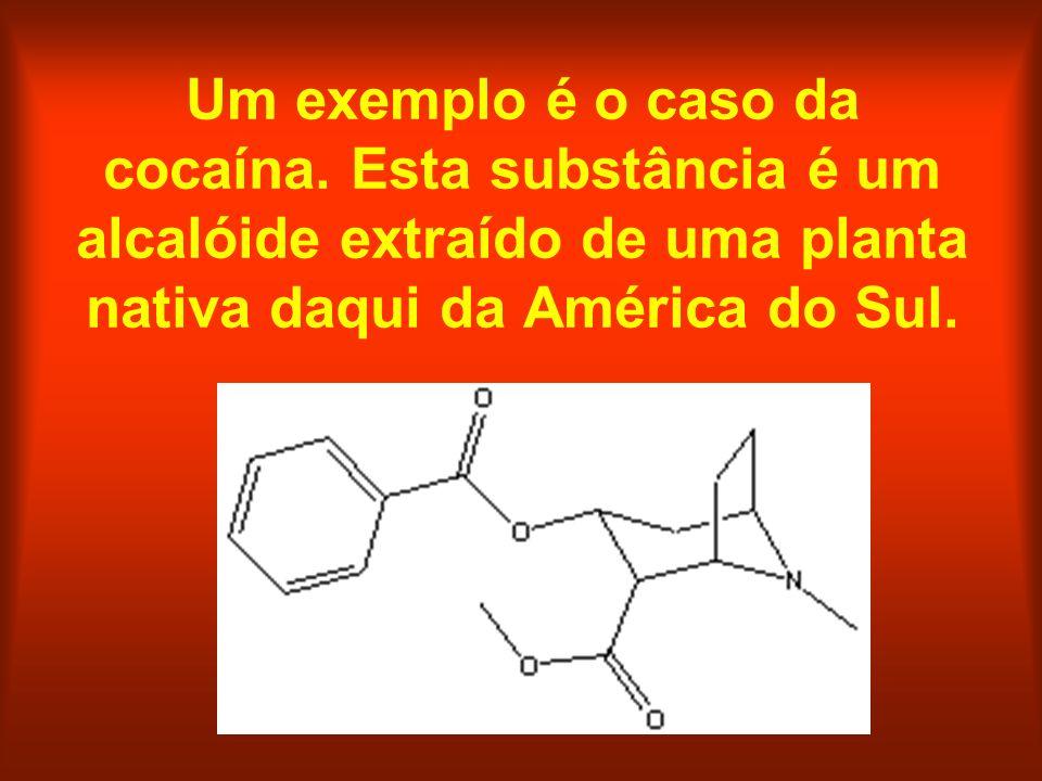 Um exemplo é o caso da cocaína. Esta substância é um alcalóide extraído de uma planta nativa daqui da América do Sul.