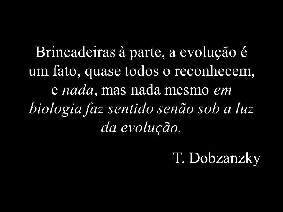 Brincadeiras à parte, a evolução é um fato, quase todos o reconhecem, e nada, mas nada mesmo em biologia faz sentido senão sob a luz da evolução. T. D