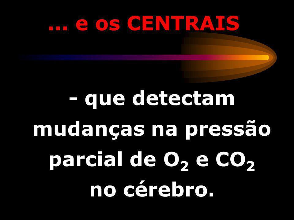 OS ARTERIAIS - que detectam mudanças na pressão parcial de O 2 e CO 2 no sangue arterial.