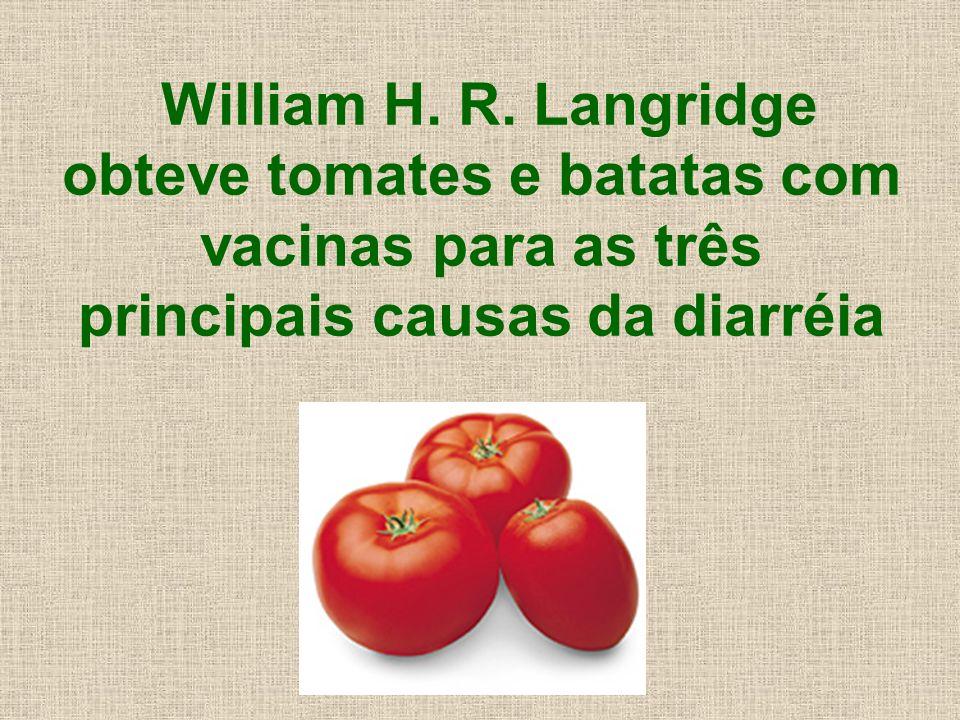 William H. R. Langridge obteve tomates e batatas com vacinas para as três principais causas da diarréia