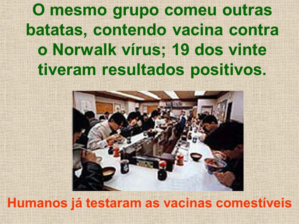 O mesmo grupo comeu outras batatas, contendo vacina contra o Norwalk vírus; 19 dos vinte tiveram resultados positivos. Humanos já testaram as vacinas