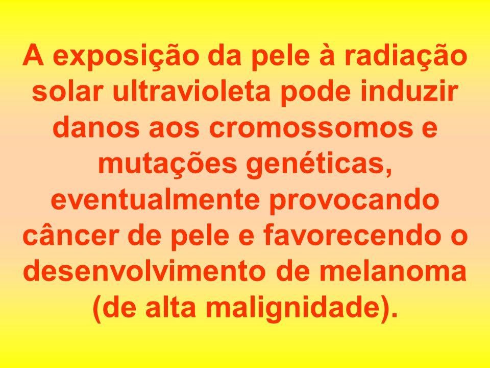 Muitos óleos bronzeadores e pílulas de bronzeamento que existem no mercado não aumentam de forma nenhuma a pigmentação da pele - não passam de fraudes.