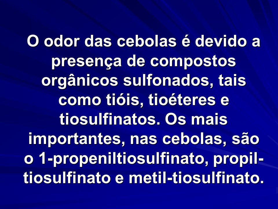 O odor das cebolas é devido a presença de compostos orgânicos sulfonados, tais como tióis, tioéteres e tiosulfinatos. Os mais importantes, nas cebolas