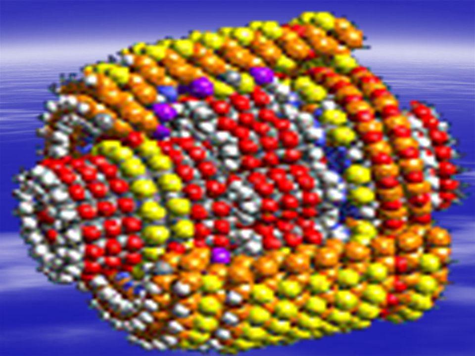 Aplicando-se um determinado potencial elétrico, a molécula de rotaxane é quebrada e o elétron passa livremente.