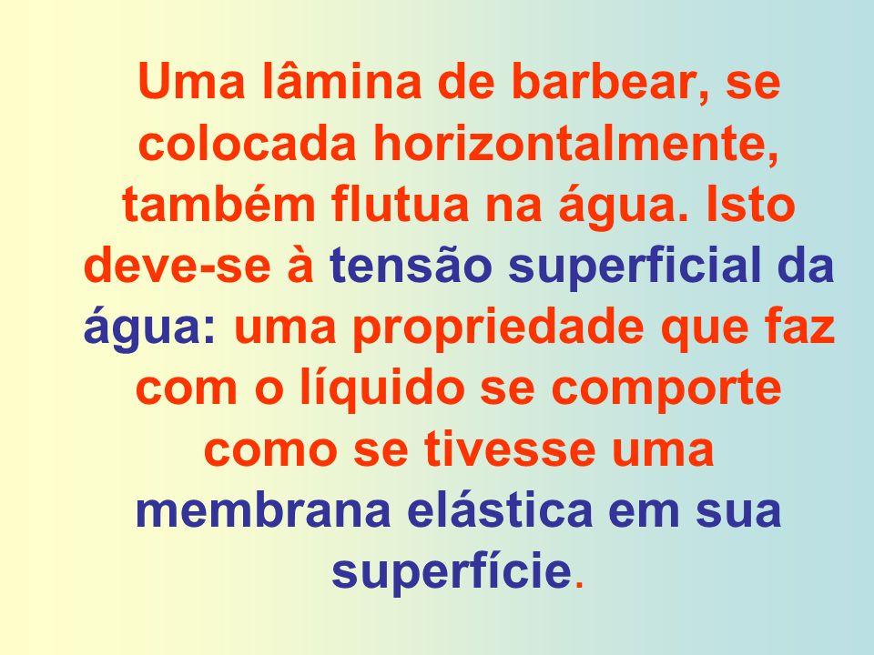 Uma lâmina de barbear, se colocada horizontalmente, também flutua na água. Isto deve-se à tensão superficial da água: uma propriedade que faz com o lí