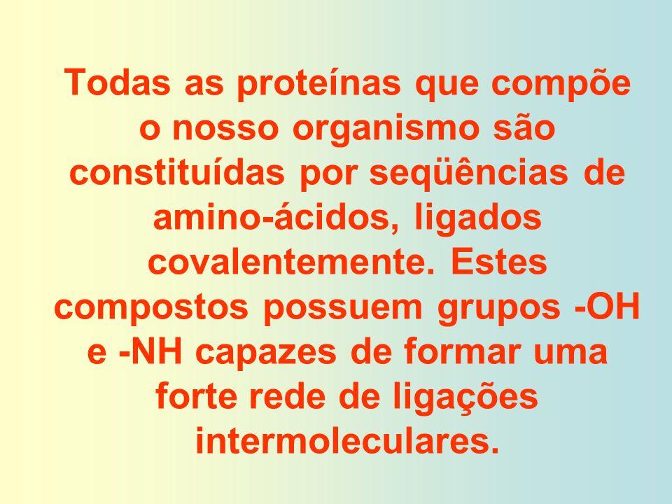 Todas as proteínas que compõe o nosso organismo são constituídas por seqüências de amino-ácidos, ligados covalentemente. Estes compostos possuem grupo
