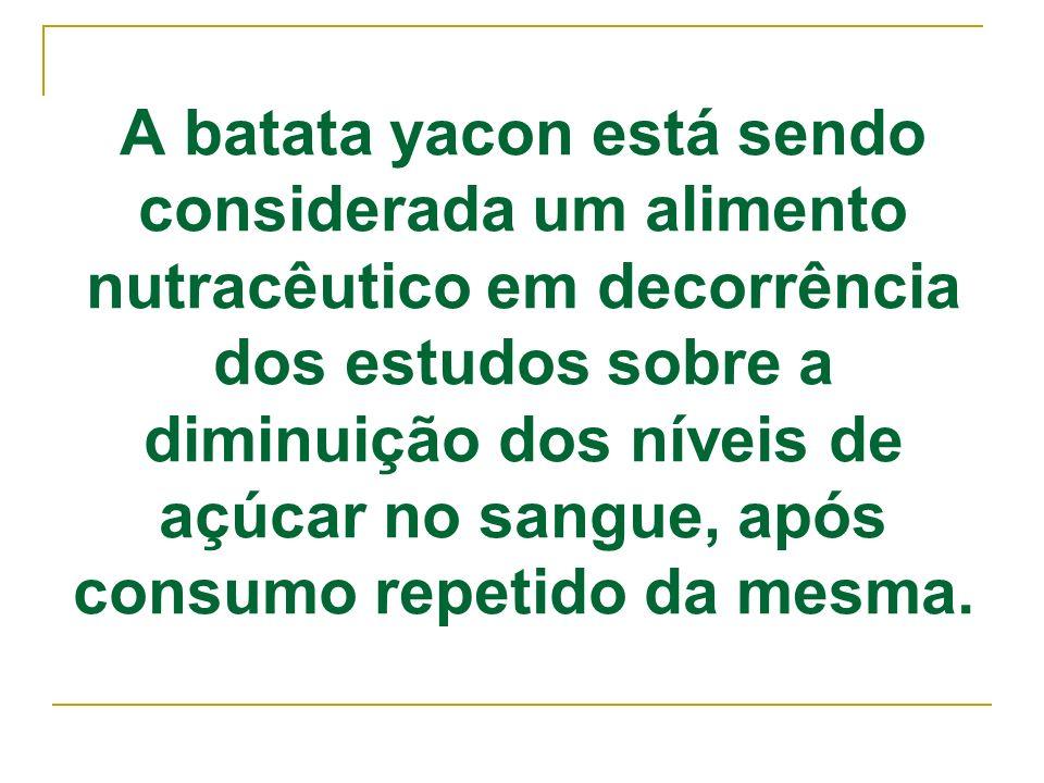 A batata yacon está sendo considerada um alimento nutracêutico em decorrência dos estudos sobre a diminuição dos níveis de açúcar no sangue, após cons