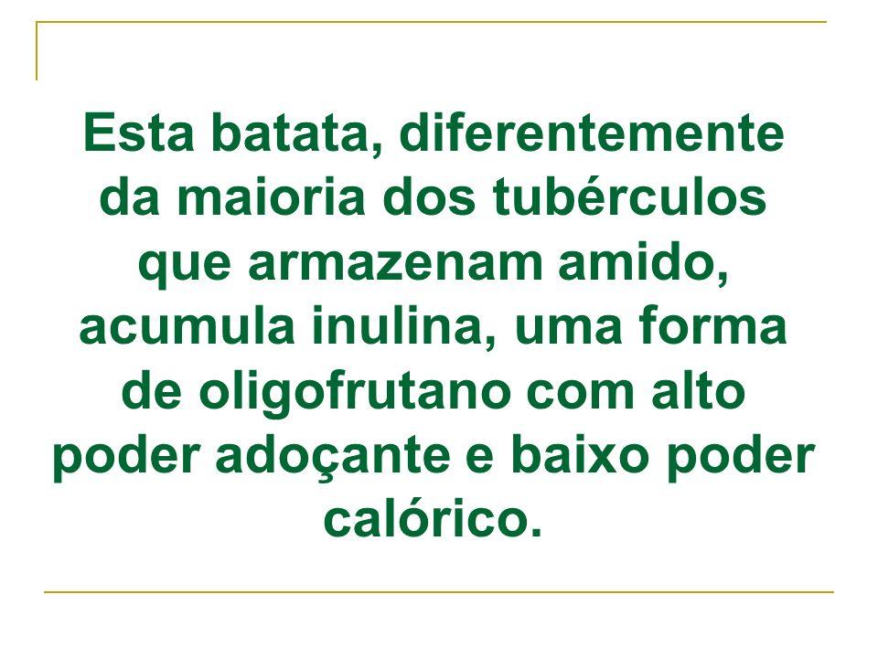 A inulina é um carbo-hidrato cuja cadeia é composta predominantemente por unidades de frutose, com uma unidade de glicose terminal, uma molécula de sacarose associada a n moléculas de frutose.