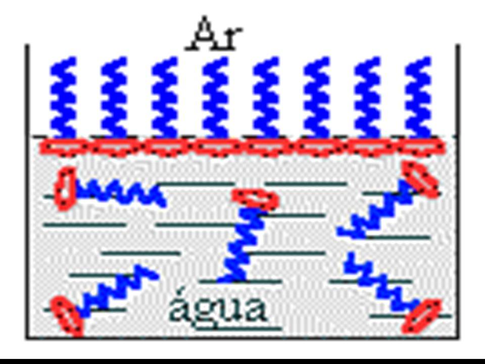 Deste modo, teremos preferencialmente a formação de uma camada superficial de moléculas colocadas em fila única até cobrir toda a superfície do recipiente.