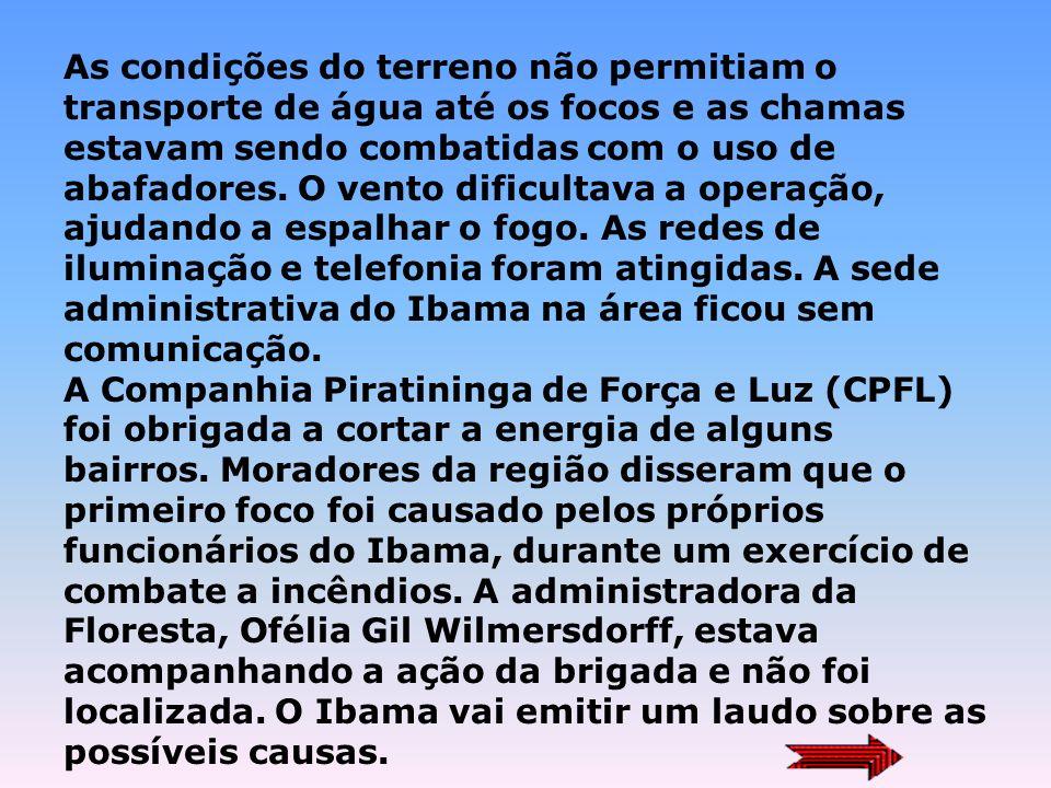 Reportagens: Incêndio atinge a Floresta Nacional de Ipanema 24/09/2003 A área queimada, equivalente a 200 hectares, inclui bosques com árvores frondos