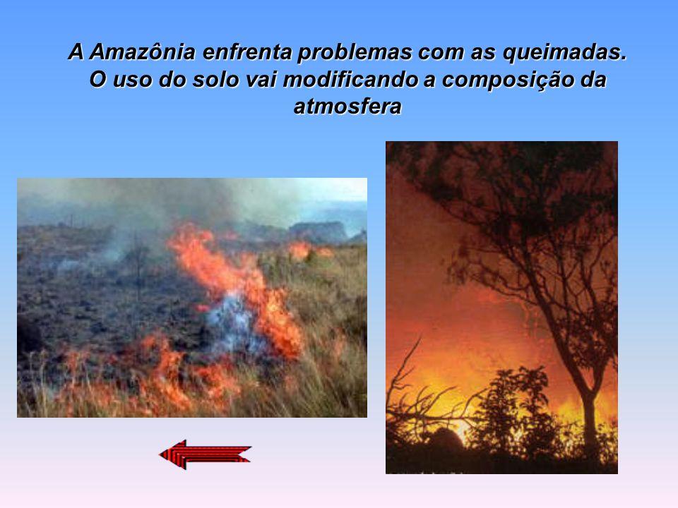 Amazônia queima com intensidade 24/09/2001 Ainda não há sinal de diminuição no ritmo das queimadas, que agora se concentram nas regiões Norte e Nordes