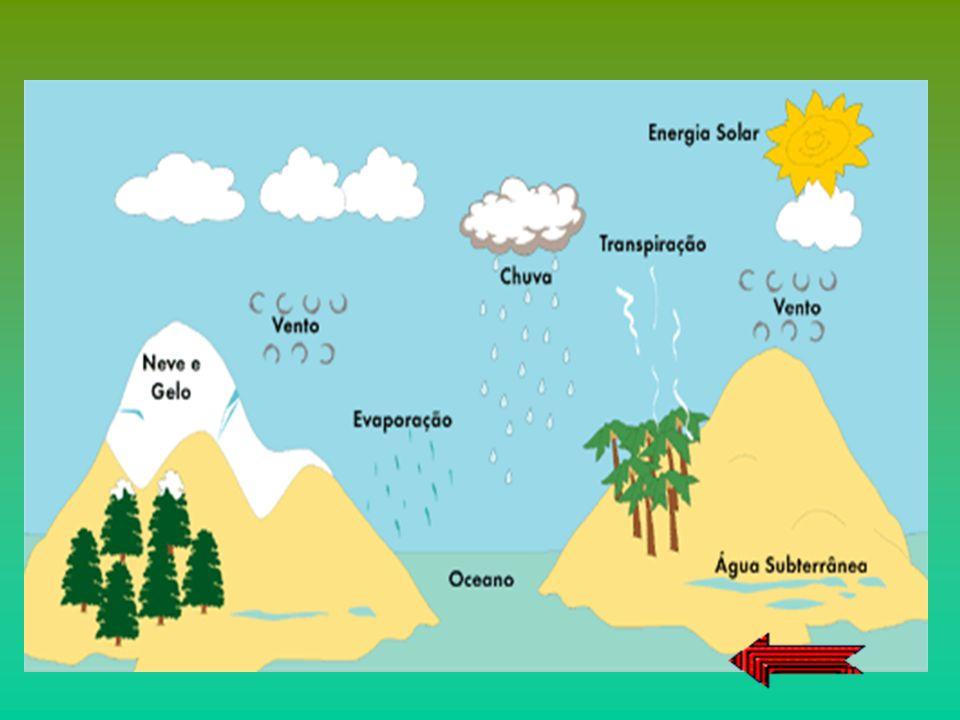 Pode admitir-se que a quantidade total de água existente na Terra, nas suas três fases, sólida, líquida e gasosa, se tem mantido constante, desde o ap