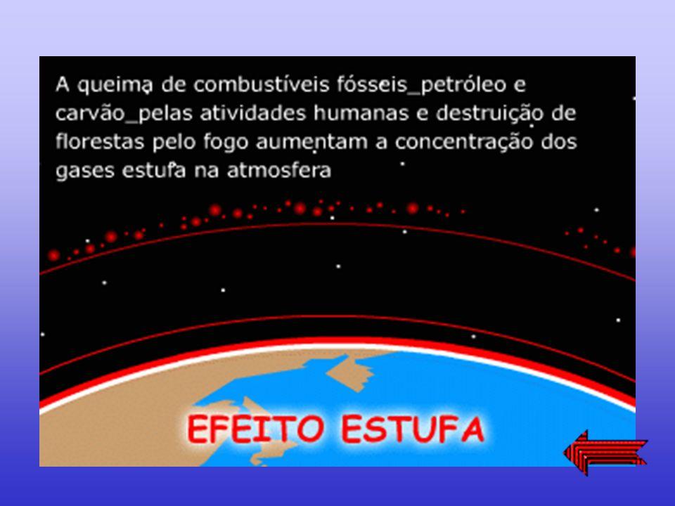 A emissão de determinados gases na atmosfera, está provocando o aquecimento geral do planeta. Há previsões de que, se este processo continuar, poderem