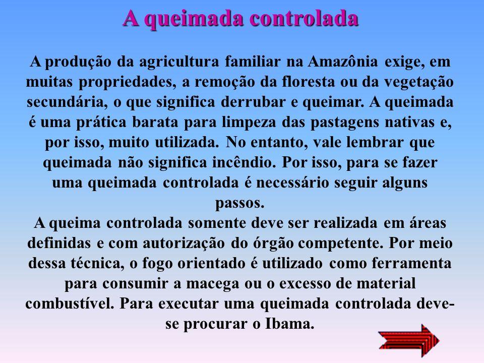 A queimada controlada A produção da agricultura familiar na Amazônia exige, em muitas propriedades, a remoção da floresta ou da vegetação secundária, o que significa derrubar e queimar.
