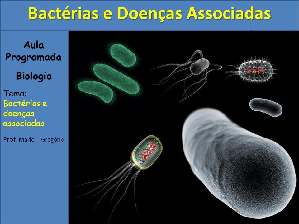 Aula Programada Biologia Tema: Bactérias e doenças associadas Prof. Mário Gregório Bactérias e Doenças Associadas