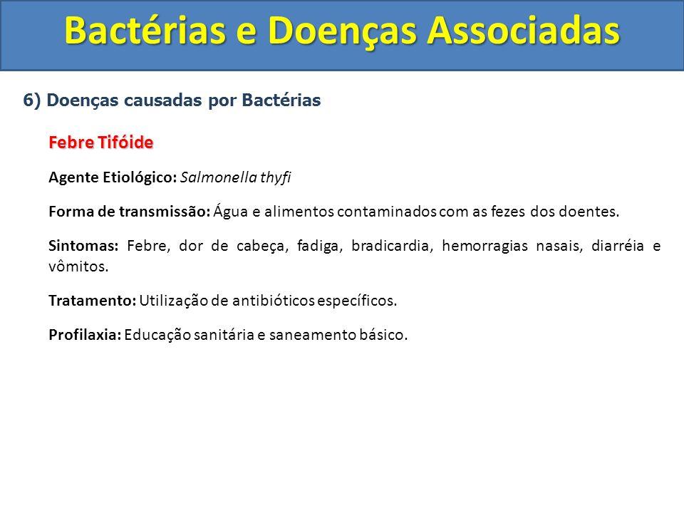 6) Doenças causadas por Bactérias Febre Tifóide Agente Etiológico: Salmonella thyfi Forma de transmissão: Água e alimentos contaminados com as fezes d
