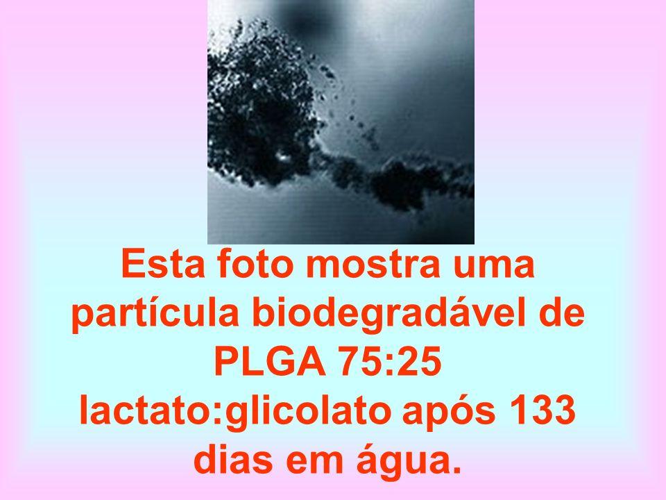 Esta foto mostra uma partícula biodegradável de PLGA 75:25 lactato:glicolato após 133 dias em água.