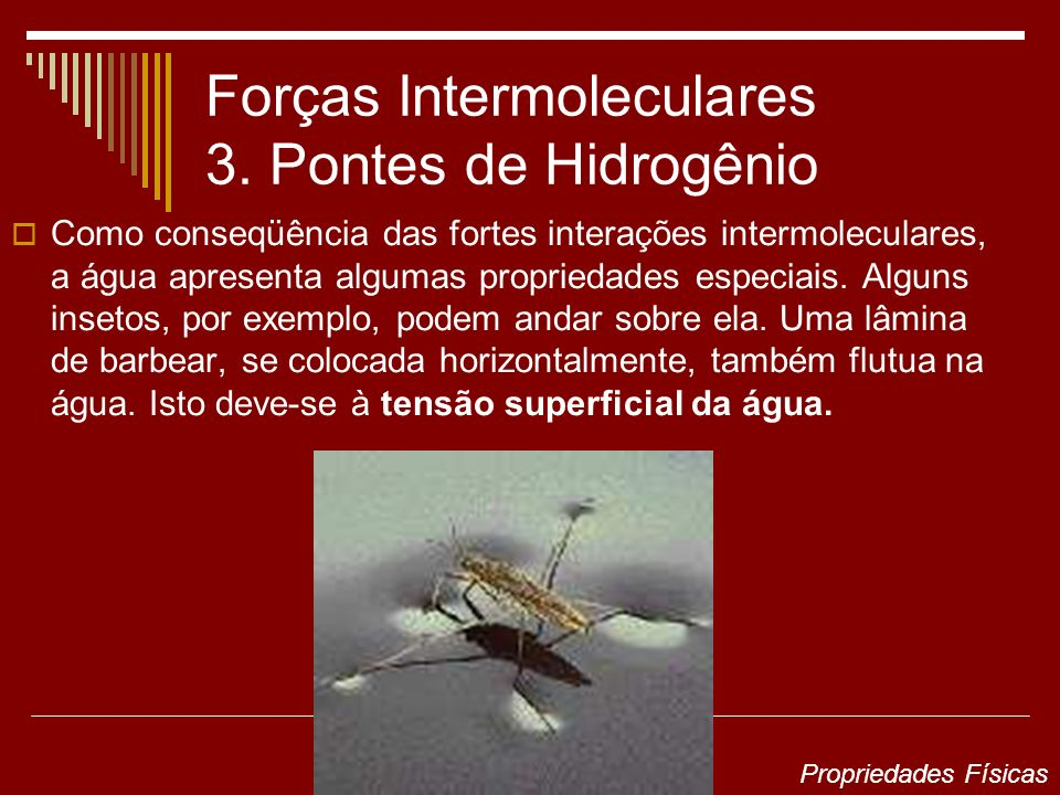 Forças Intermoleculares 3. Pontes de Hidrogênio Como conseqüência das fortes interações intermoleculares, a água apresenta algumas propriedades especi