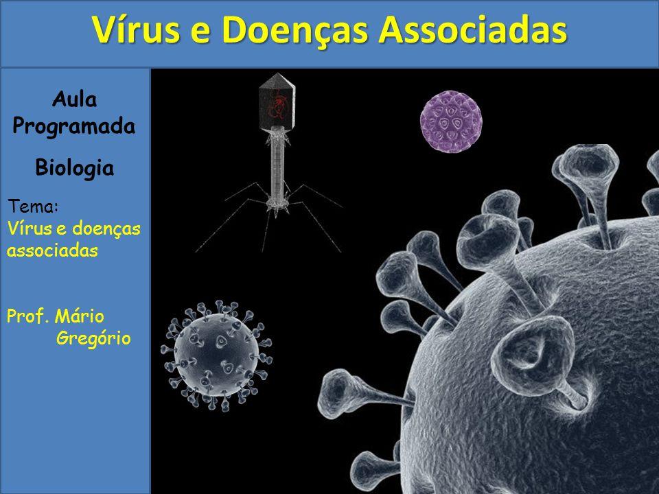 Aula Programada Biologia Tema: Vírus e doenças associadas Prof. Mário Gregório Vírus e Doenças Associadas