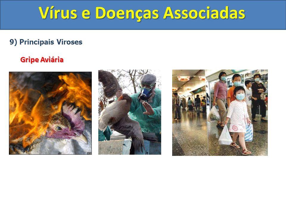 Vírus e Doenças Associadas 9) Principais Viroses Gripe Aviária