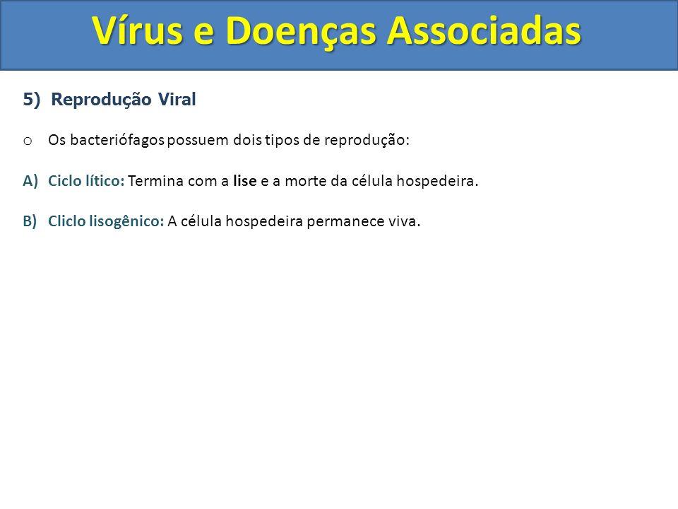 Vírus e Doenças Associadas 5) Reprodução Viral o Os bacteriófagos possuem dois tipos de reprodução: A)Ciclo lítico: Termina com a lise e a morte da cé