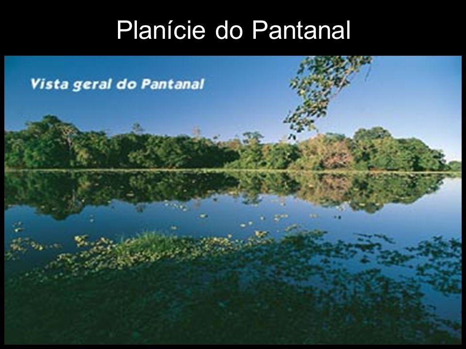 Planície do Pantanal