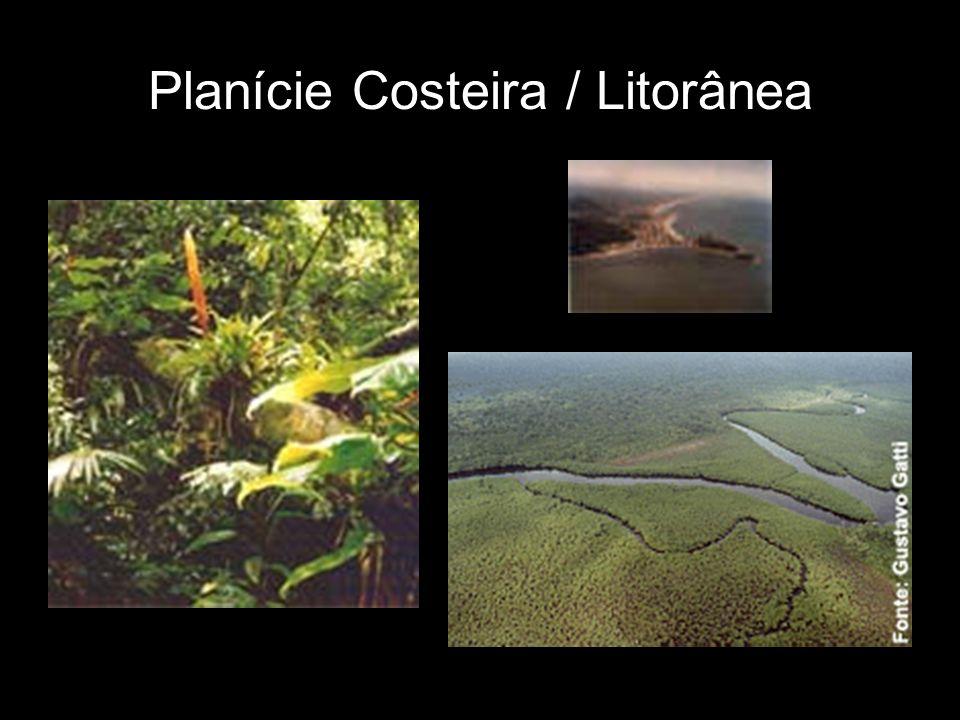 Planície Costeira / Litorânea