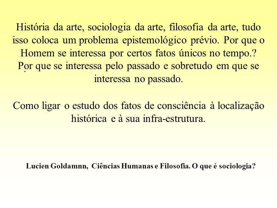 História da arte, sociologia da arte, filosofia da arte, tudo isso coloca um problema epistemológico prévio. Por que o Homem se interessa por certos f
