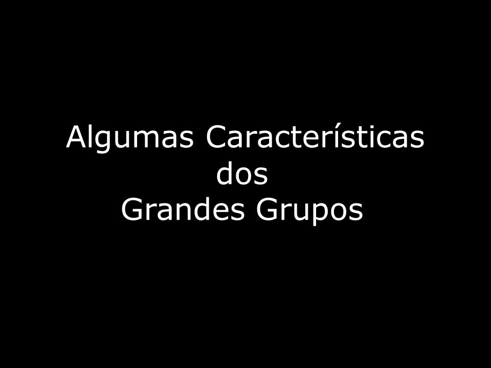 Algumas Características dos Grandes Grupos
