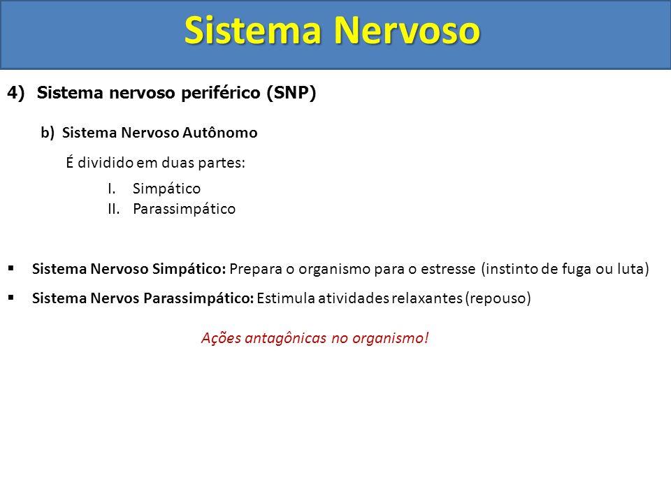 Sistema Nervoso 4) Sistema nervoso periférico (SNP) b) Sistema Nervoso Autônomo É dividido em duas partes: I.Simpático II.Parassimpático Sistema Nervo