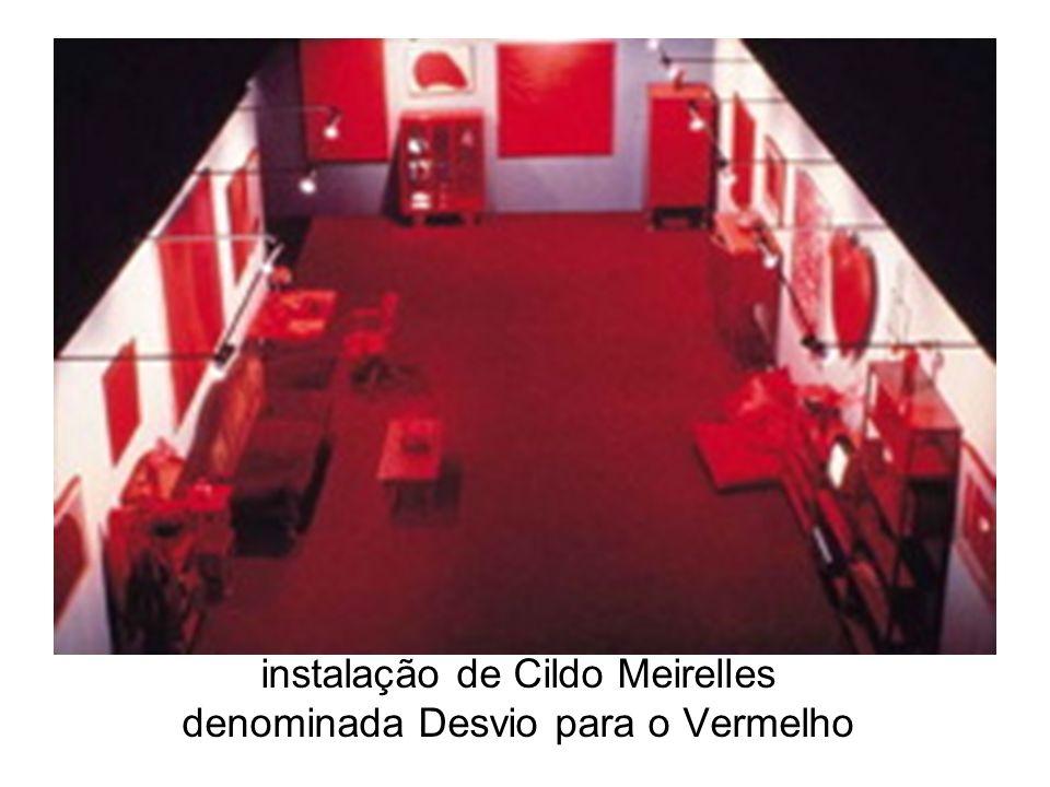 instalação de Cildo Meirelles denominada Desvio para o Vermelho