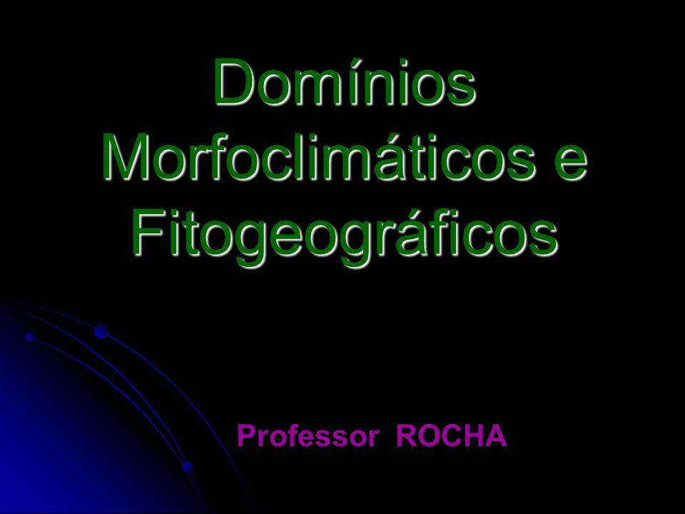 Domínios Morfoclimáticos e Fitogeográficos Professor ROCHA