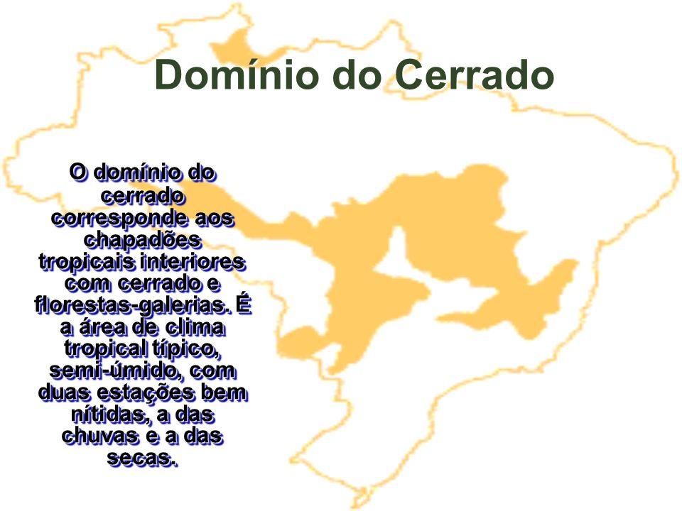 Domínio do Cerrado O domínio do cerrado corresponde aos chapadões tropicais interiores com cerrado e florestas-galerias. É a área de clima tropical tí