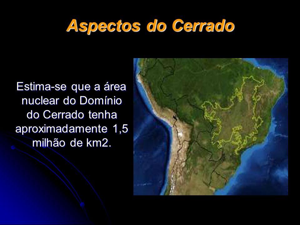 Aspectos do Cerrado Estima-se que a área nuclear do Domínio do Cerrado tenha aproximadamente 1,5 milhão de km2. Estima-se que a área nuclear do Domíni