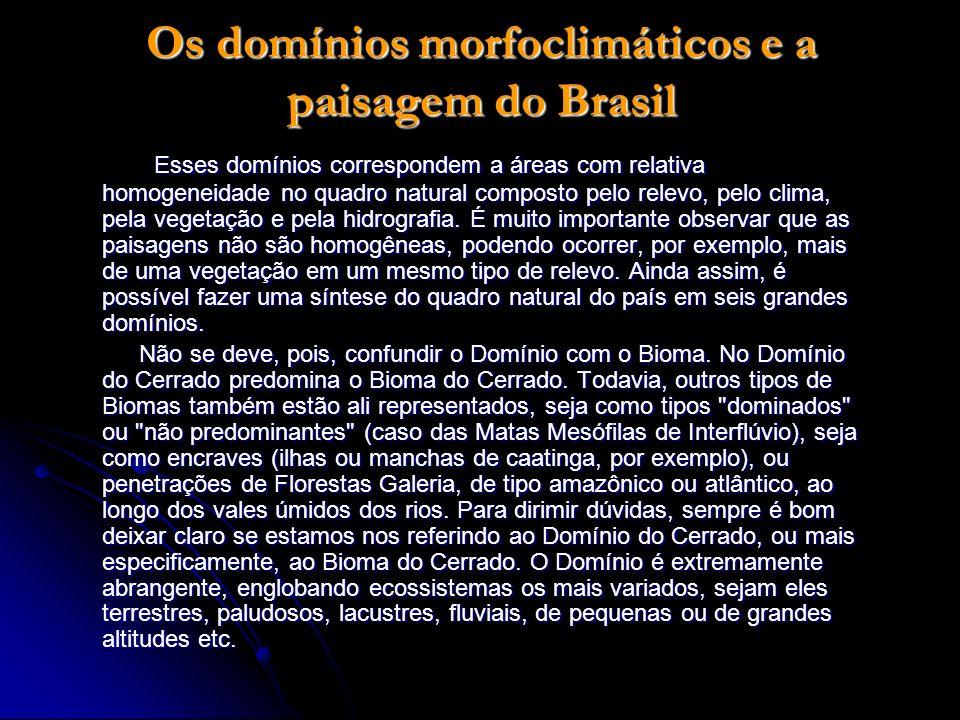 Os domínios morfoclimáticos e a paisagem do Brasil Esses domínios correspondem a áreas com relativa homogeneidade no quadro natural composto pelo rele