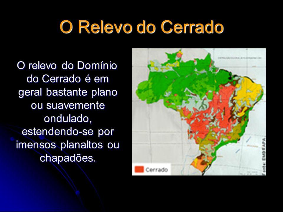O Relevo do Cerrado O relevo do Domínio do Cerrado é em geral bastante plano ou suavemente ondulado, estendendo-se por imensos planaltos ou chapadões.