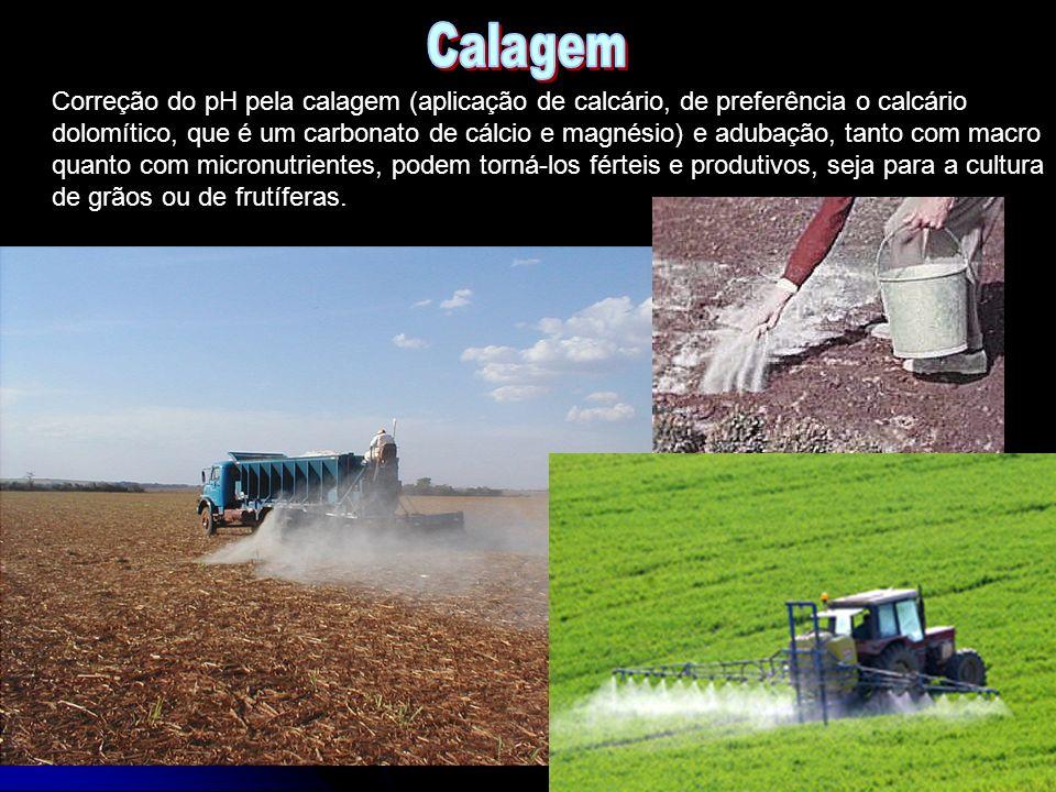 Correção do pH pela calagem (aplicação de calcário, de preferência o calcário dolomítico, que é um carbonato de cálcio e magnésio) e adubação, tanto c