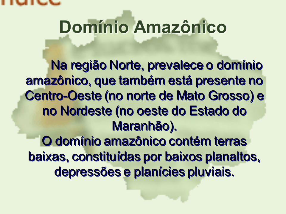 Domínio Amazônico Na região Norte, prevalece o domínio amazônico, que também está presente no Centro-Oeste (no norte de Mato Grosso) e no Nordeste (no