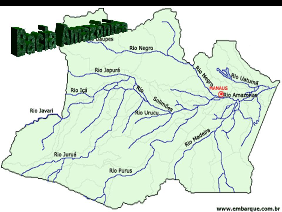 O nome Amazônia deriva de amazonas , mulheres guerreiras da mitologia grega dado por Francisco de Orellana, se referindso às índias da tribo Icamiabas.