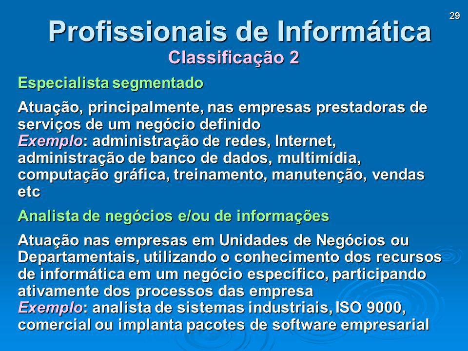 29 Especialista segmentado Atuação, principalmente, nas empresas prestadoras de serviços de um negócio definido Exemplo: administração de redes, Inter