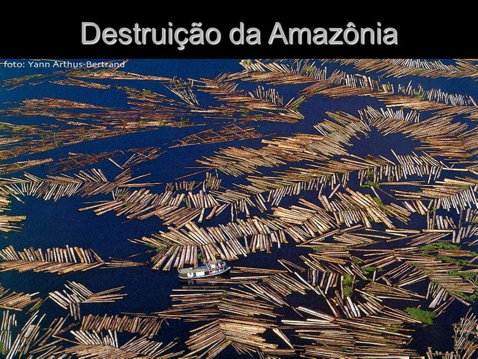 Restingas Vegetação típica de terrenos arenosos e salinos do litoral.