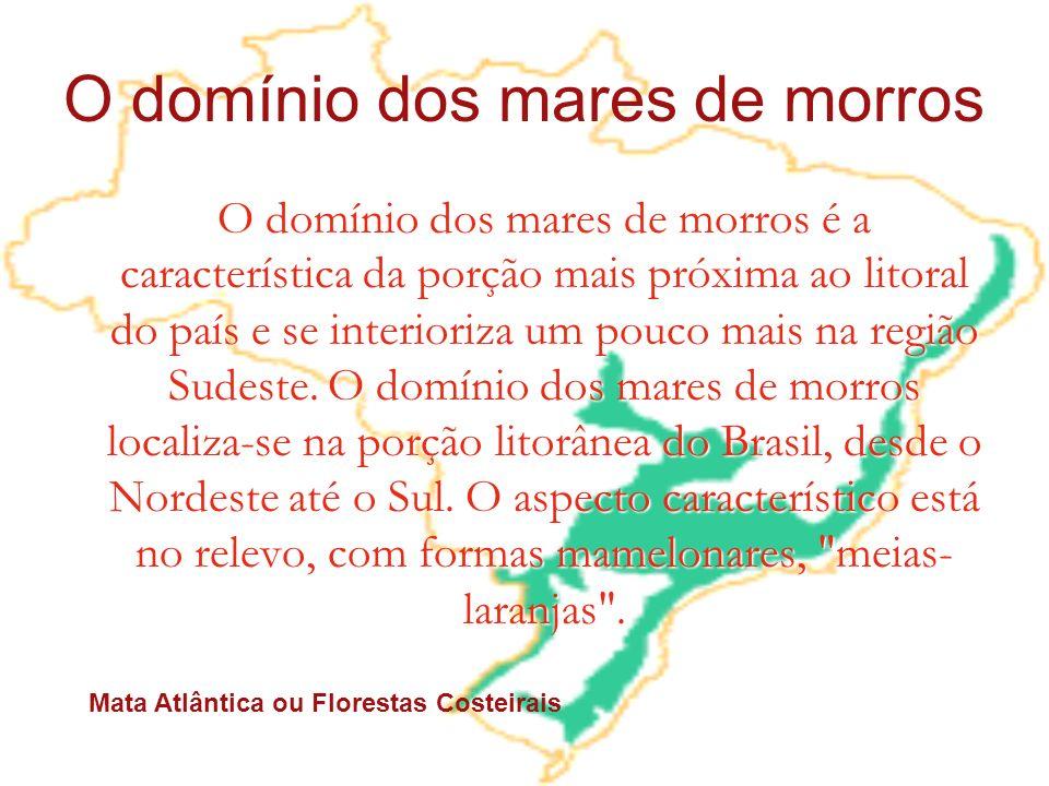 O domínio dos mares de morros O domínio dos mares de morros é a característica da porção mais próxima ao litoral do país e se interioriza um pouco mai