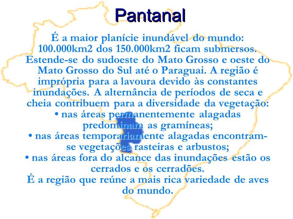 É a maior planície inundável do mundo: 100.000km2 dos 150.000km2 ficam submersos. Estende-se do sudoeste do Mato Grosso e oeste do Mato Grosso do Sul