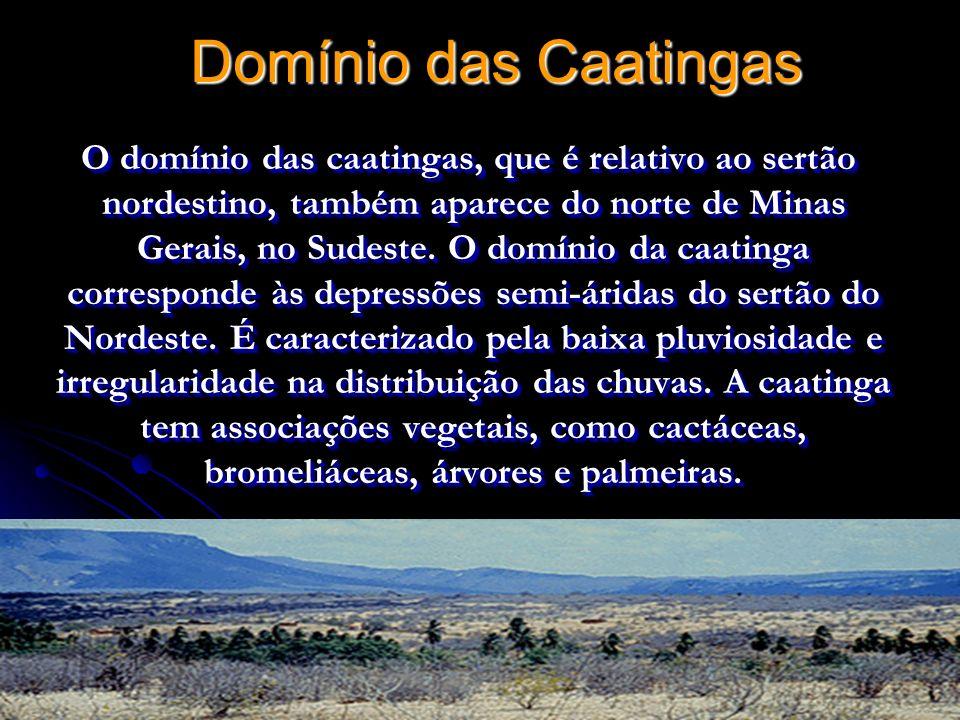 Domínio das Caatingas O domínio das caatingas, que é relativo ao sertão nordestino, também aparece do norte de Minas Gerais, no Sudeste. O domínio da
